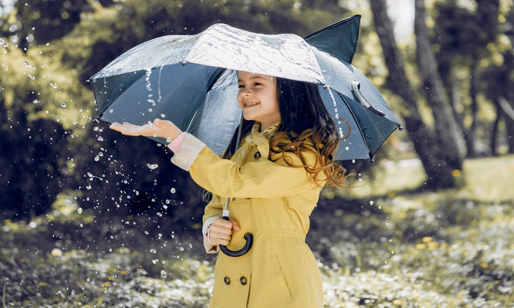 Kennesaw Personal Umbrella Insurance
